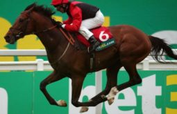 10 Regras de Ouro Para Apostar nas Corridas de Cavalo