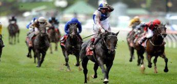 Estratégias Corridas de Cavalos – Trading Pré Live